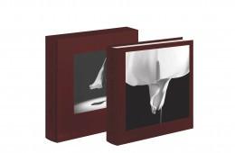 book-case-white